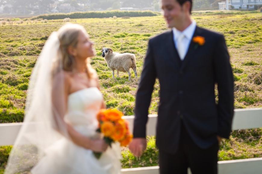 carmel_wedding_13